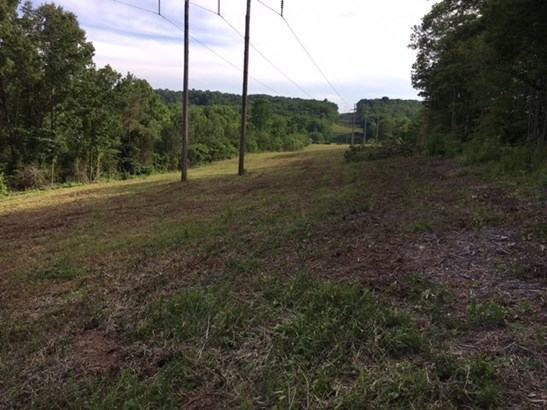 Lots and Land - COOKEVILLE, TN (photo 2)