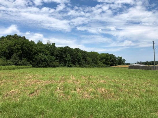 Lots and Land - Ethelsville, AL (photo 1)
