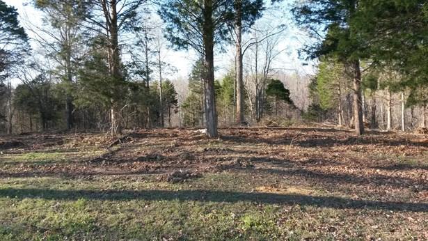 Lots and Land - Stewart, TN (photo 1)