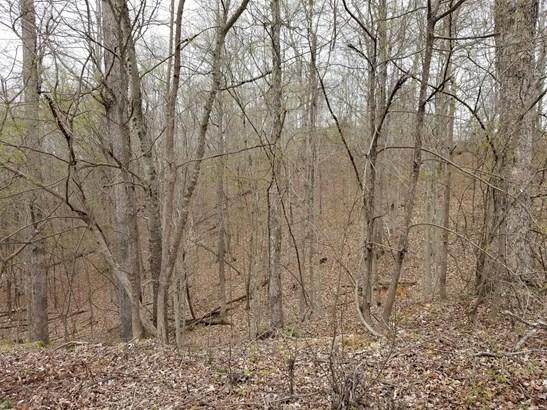 Lots and Land - Stewart, TN (photo 2)