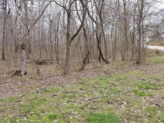 Lots and Land - Stewart, TN (photo 3)