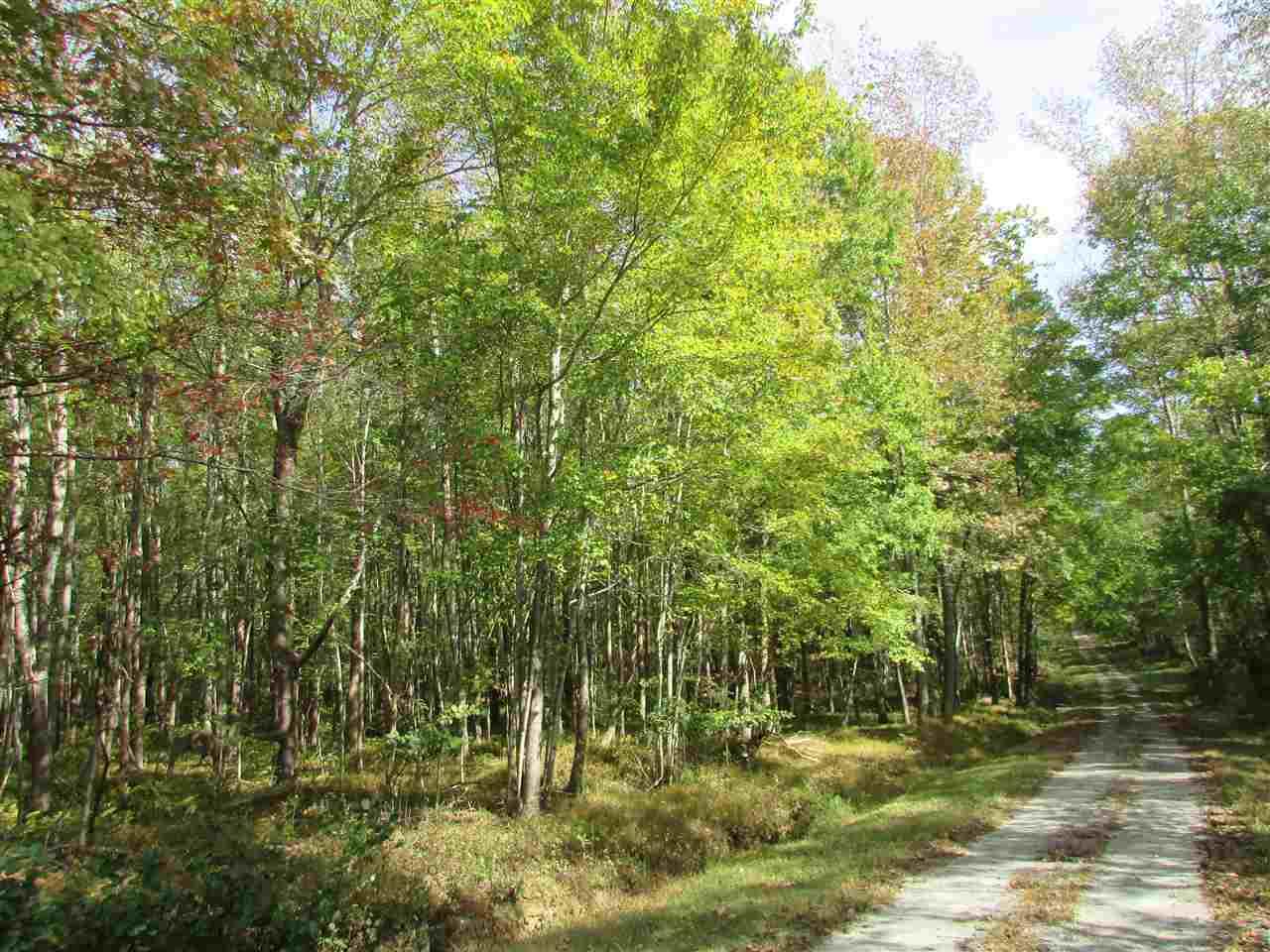 Lots and Land - Cedar Grove, TN (photo 2)
