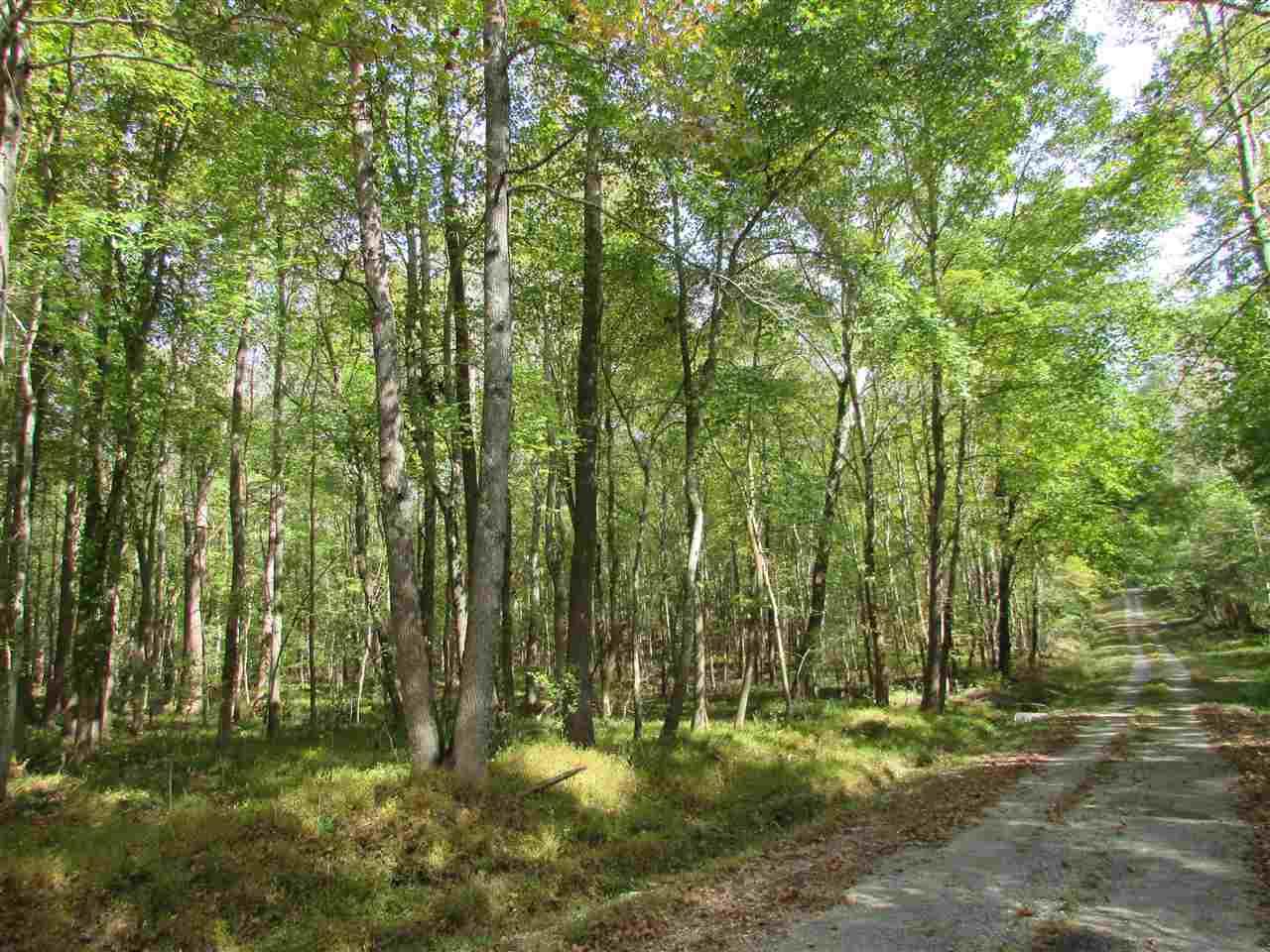 Lots and Land - Cedar Grove, TN (photo 4)
