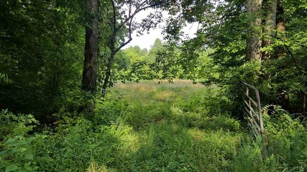 Lots and Land - Sugar Tree, TN (photo 4)