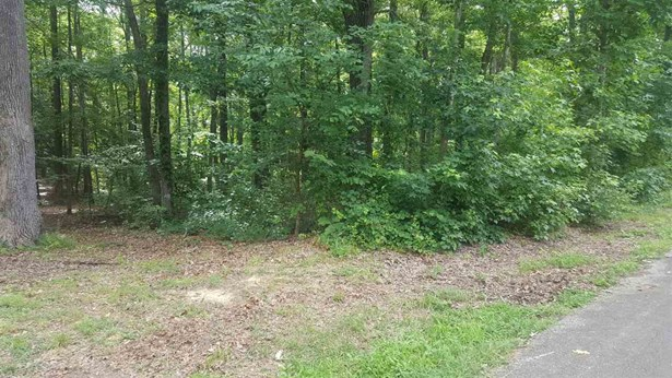Lots and Land - Parsons, TN (photo 4)