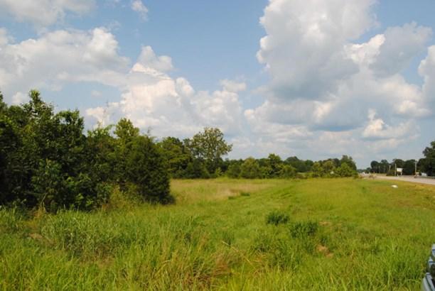 Lots and Land - Guntown, MS (photo 2)