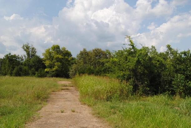 Lots and Land - Guntown, MS (photo 3)
