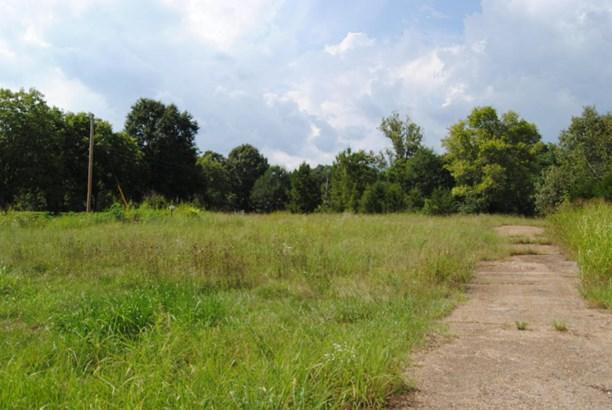 Lots and Land - Guntown, MS (photo 4)