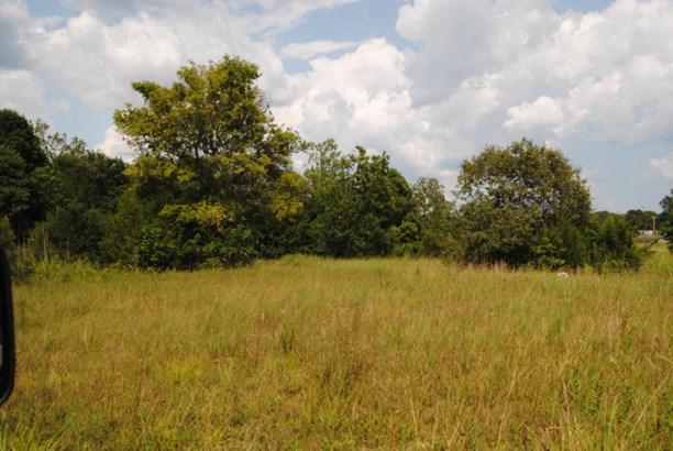 Lots and Land - Guntown, MS (photo 5)