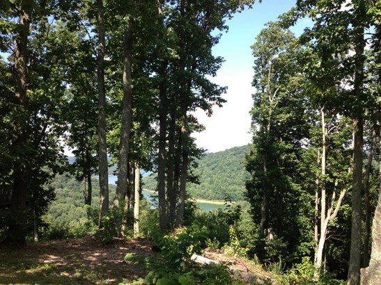 Lots and Land - Smithville, TN (photo 2)