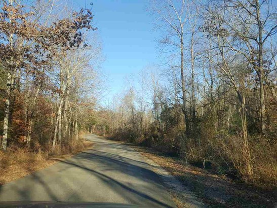 Lots and Land - Holladay, TN (photo 2)