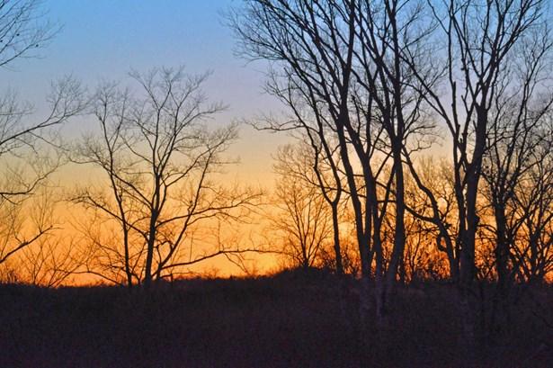 Lots and Land - Jasper, TN (photo 4)