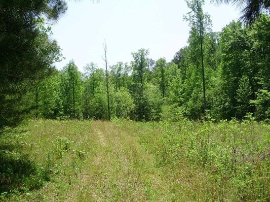 Lots and Land - Dawsonville, GA (photo 1)