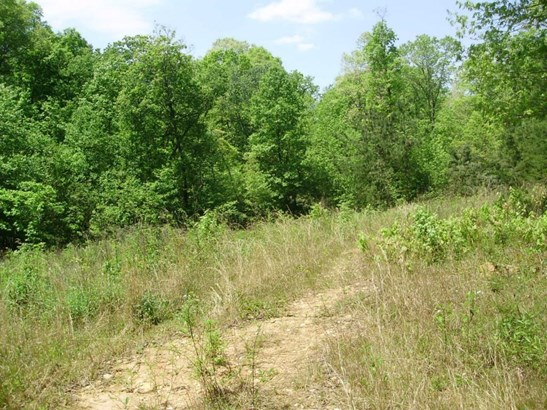 Lots and Land - Dawsonville, GA (photo 2)