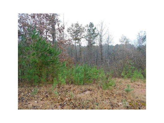 Lots and Land - Dawsonville, GA (photo 5)