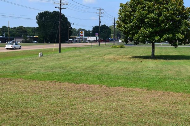 Lots and Land - Henderson, TN (photo 3)