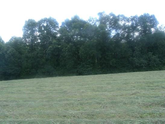 Lots and Land - Ethridge, TN (photo 2)
