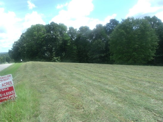Lots and Land - Ethridge, TN (photo 3)