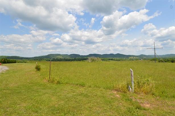 Lots and Land - Liberty, TN (photo 4)