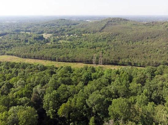 Lots and Land - Tuscumbia, AL (photo 2)