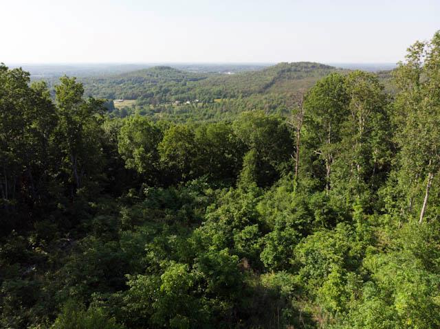 Lots and Land - Tuscumbia, AL (photo 5)