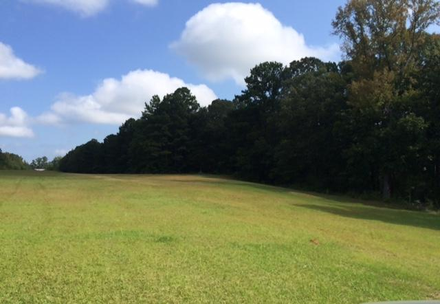 Lots and Land - Tupelo, MS (photo 3)