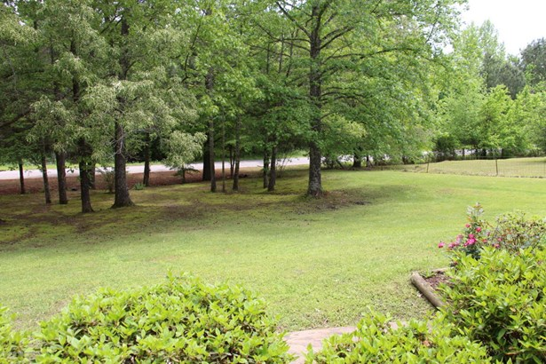 Residential/Single Family - Byhalia, MS (photo 4)