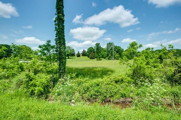 Lots and Land - Columbia, TN (photo 4)