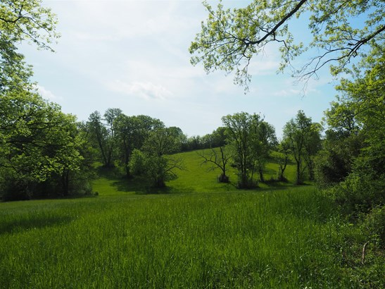 Lots and Land - Mount Pleasant, TN (photo 2)