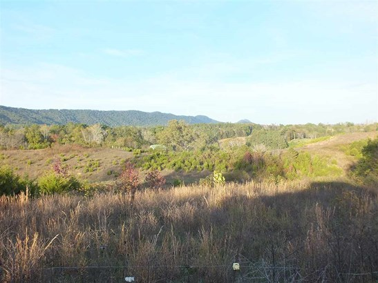 Lots and Land - Rogersville, TN (photo 1)