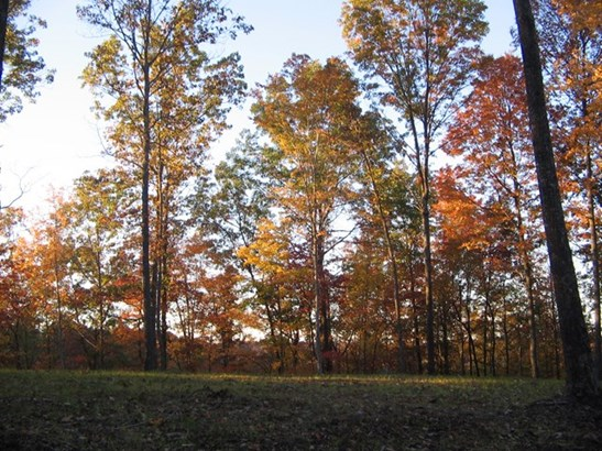 Lots and Land - Hilham, TN (photo 1)