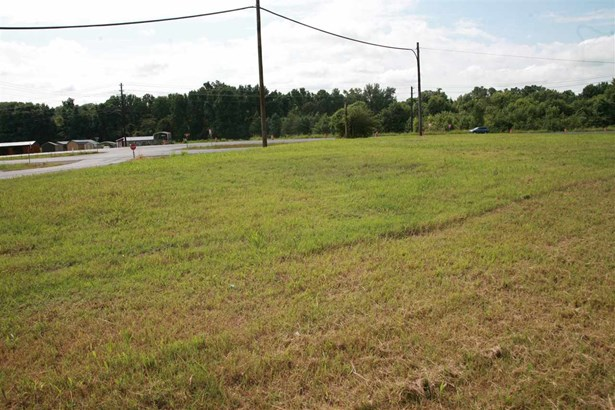Lots and Land - Munford, TN (photo 4)