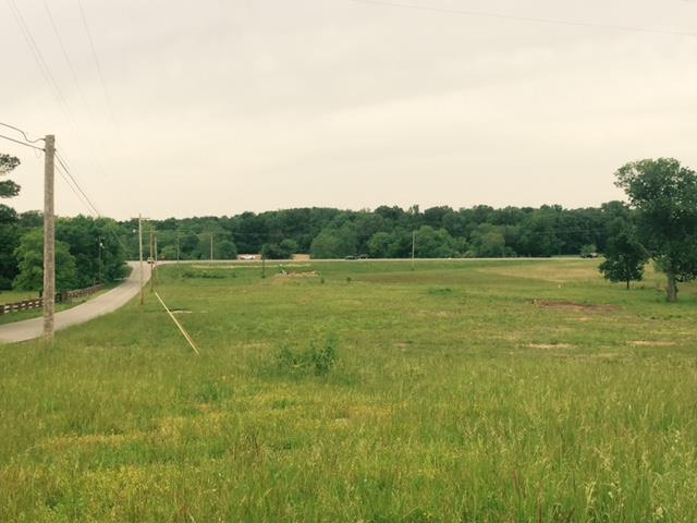 Lots and Land - Shelbyville, TN (photo 3)
