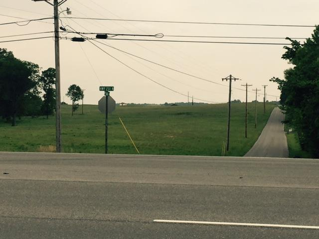 Lots and Land - Shelbyville, TN (photo 4)