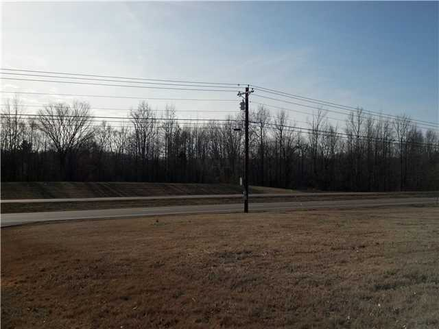 Lots and Land - Pinson, TN (photo 5)