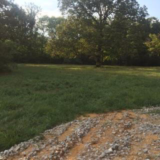 Lots and Land - Belden, MS (photo 1)