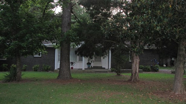 Residential/Single Family - Hamilton, MS (photo 3)