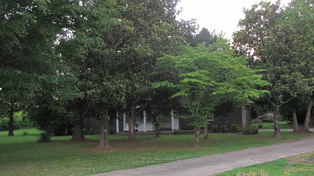 Residential/Single Family - Hamilton, MS (photo 4)