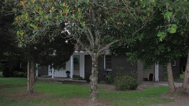 Residential/Single Family - Hamilton, MS (photo 5)