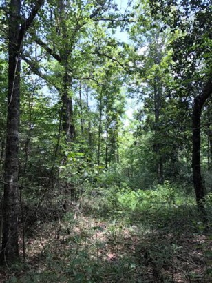 Lots and Land - Summit, MS (photo 1)