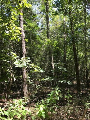 Lots and Land - Summit, MS (photo 4)
