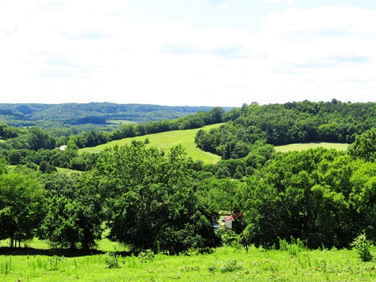 Lots and Land - Hampshire, TN (photo 1)