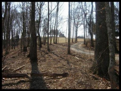 Lots and Land - Lenoir City, TN (photo 3)