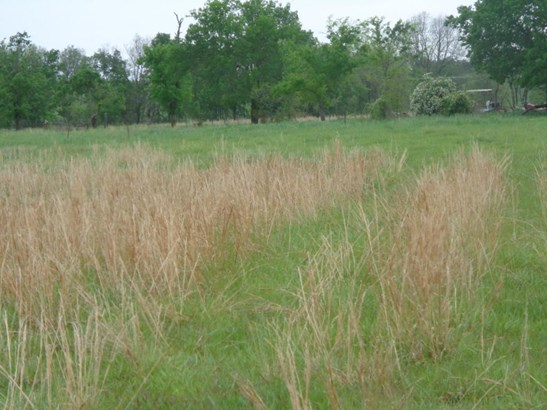 Lots and Land - Grove, OK (photo 3)