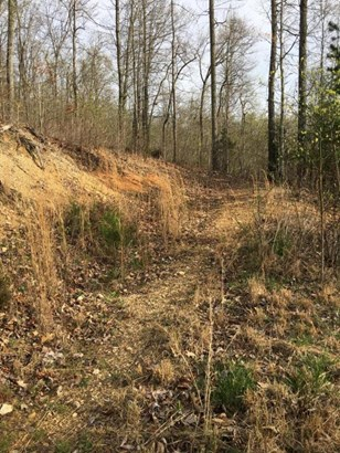 Lots and Land - New Tazewell, TN (photo 1)