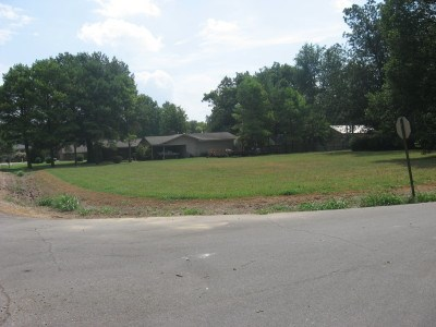 Lots and Land - Osceola, AR (photo 1)
