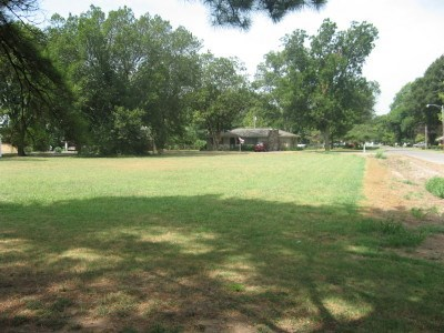 Lots and Land - Osceola, AR (photo 3)