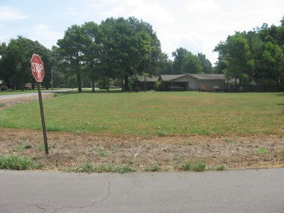 Lots and Land - Osceola, AR (photo 4)