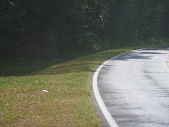 Lots and Land - Chatsworth, GA (photo 2)