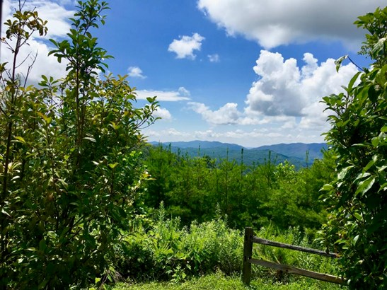 Lots and Land - Walland, TN (photo 5)